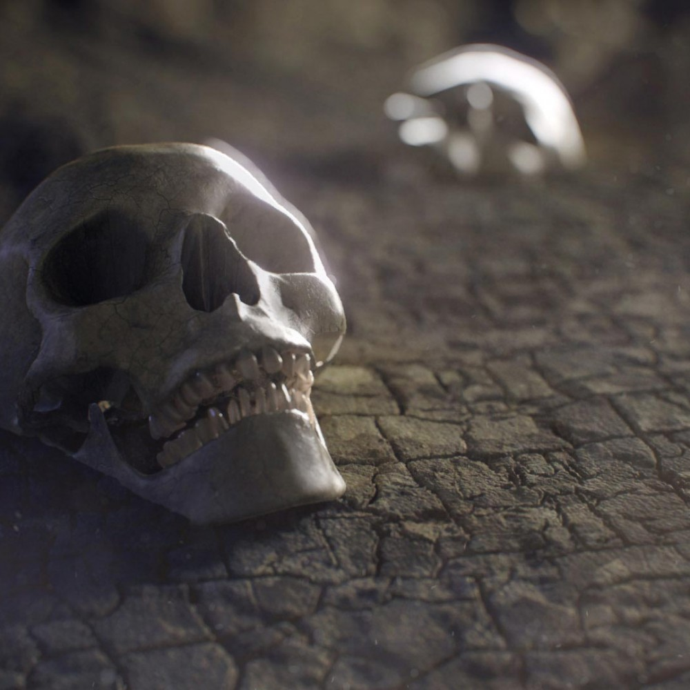 Displacement_Skull-02-lowRes